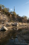 Crossing the Sutherland Wash on the Canyon Loop Trail, Catalina State Park, Tuscon, Arizona