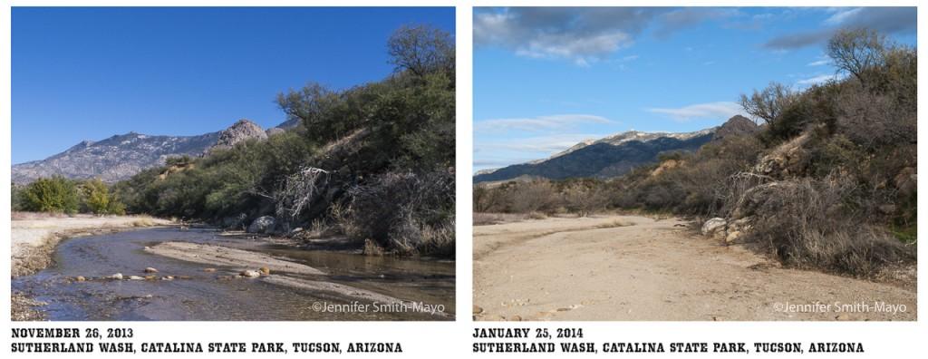 Diptych of Sutherland Wash, Catalina State Park, Tuscon, Arizona