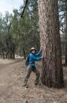 JSM vs the Ponderosa Pine