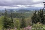 Wolf Mountain Overlook (elevation 5,500 ft), Blue Ridge Parkway, North Carolina