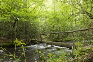 Wooden walking bridge across the Bradley Fork river in the Great Smoky Mountains National Park, North Carolina