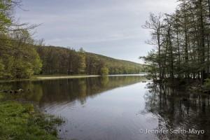 Locust Lake State Park, Barnesville, Pennsylvania
