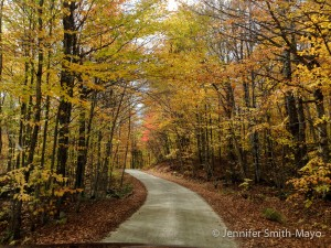 Backroad in Vermont's Northeast Kingdom